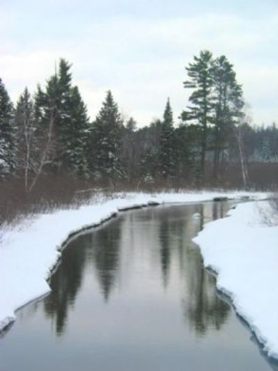 creek in winter
